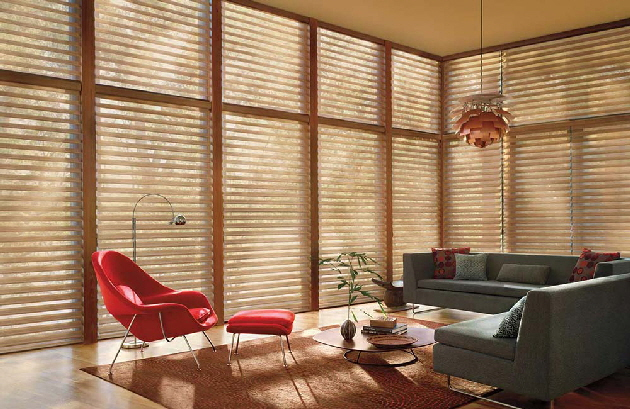 Silhouette Window Shade - Hunter Douglas